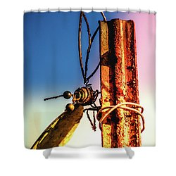 A Little Rusty Shower Curtain