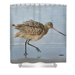 A Little Shimmy 2 Shower Curtain