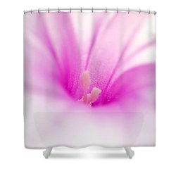 A Living Poem Shower Curtain