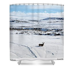 A Lone Buck Deer In Carbon County, Wyoming Shower Curtain