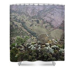 A Long Way Down Shower Curtain by Anne Rodkin