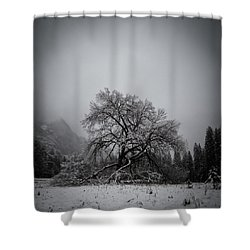 A Magic Tree Shower Curtain
