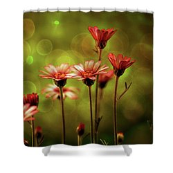 A Magical Evening Shower Curtain