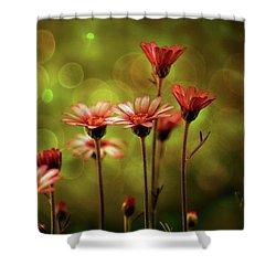 A Magical Evening Shower Curtain