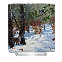 A Meeting In The Woods Shower Curtain