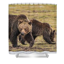 A Mini-mom And Yearling Shower Curtain