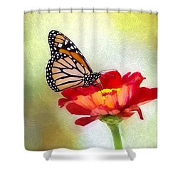 A Monarch Moment Shower Curtain