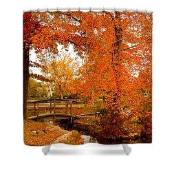 A Morning In Autumn - Lake Carasaljo Shower Curtain