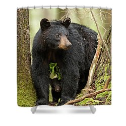 A Mothers Love Shower Curtain by Everet Regal