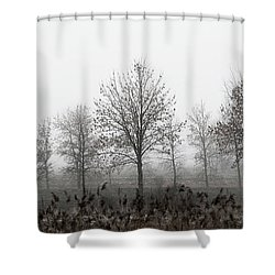 A Murder In The Fog Shower Curtain