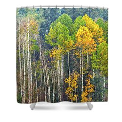 A Muted Fall Shower Curtain