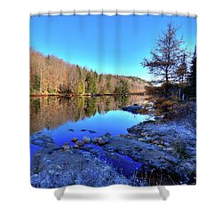 Shower Curtain featuring the photograph A November Morning On The Pond by David Patterson