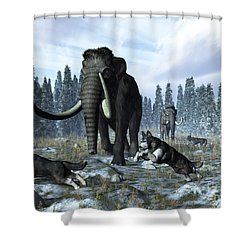 A Pack Of Dire Wolves Crosses Paths Shower Curtain by Walter Myers