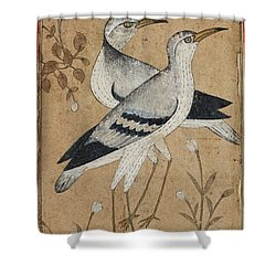A Pair Of Lapwings Shower Curtain by MotionAge Designs