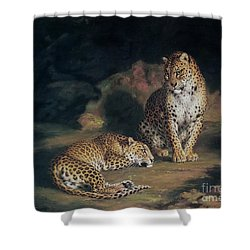 A Pair Of Leopards Shower Curtain by William Huggins