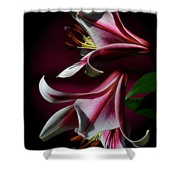 A Pair Of Lilies Shower Curtain by Judy  Johnson