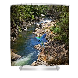 A Parrot In A New Zealand Gorge Shower Curtain