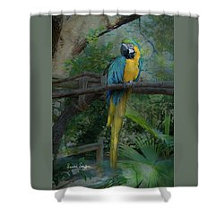 A Parrot's Life Shower Curtain