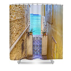A Passage To The Sea Shower Curtain