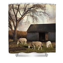 Shower Curtain featuring the photograph A Patch Of Green by Robin-Lee Vieira
