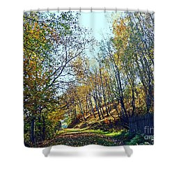 A Path In The Autumn Shower Curtain