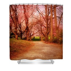 A Path To Fantasy - Holmdel Park Shower Curtain by Angie Tirado