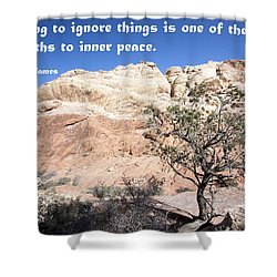 A Path To Inner Peace Shower Curtain