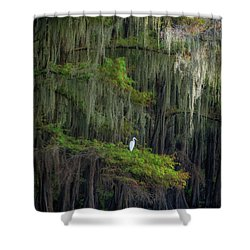 A Perch With A View Shower Curtain