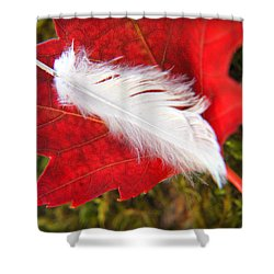 Shower Curtain featuring the photograph A Perfect Fall by Katie Wing Vigil