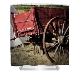 A Piece Of Our History - 365-69 Shower Curtain by Inge Riis McDonald