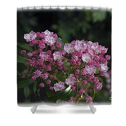A Pink Bunch Shower Curtain