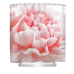 A Pink Carnation Shower Curtain