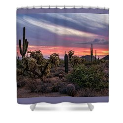Shower Curtain featuring the photograph A Pink Kissed Desert Sunset  by Saija Lehtonen