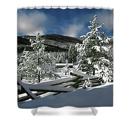 A Place In The Winter Sun Shower Curtain