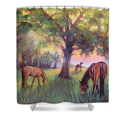 A Place Of Healing Shower Curtain by Susan Jenkins