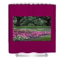 A Place Of Refuge Shower Curtain
