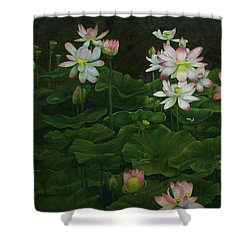 Shower Curtain featuring the painting A Pond Full Of Water Lilies And Youtube Video by Roena King