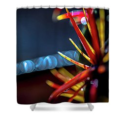 A Prickly Situation Shower Curtain