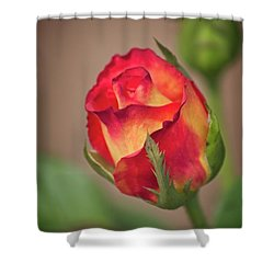 A Promise Shower Curtain