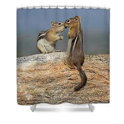 A Quick Kiss Shower Curtain by John Roberts