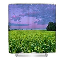 A Quiet Evening In Alberta Shower Curtain