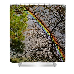 A Rainbow Tree Shower Curtain by Ben Upham III