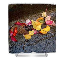 A Rainy Autumn Day In The City Shower Curtain by Rona Black