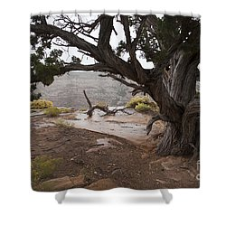 A Rainy Day At Canyon De Chelly Shower Curtain by Anne Rodkin