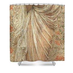 A Reader Shower Curtain by Albert Joseph Moore