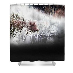 A Recurring Dream Shower Curtain by Steven Huszar