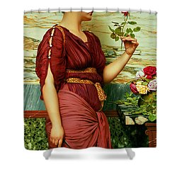 A Red Rose   Shower Curtain by John William Godward