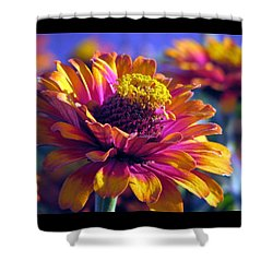 Shower Curtain featuring the photograph A Riot Of Color by Chris Anderson