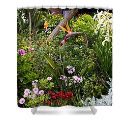 A Riot Of Flowers Shower Curtain by Lorraine Devon Wilke