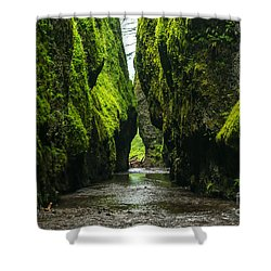 A River Runs Through It Shower Curtain by Rod Jellison